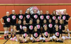Lady Chucks show support for Lisa's Ladybugs with their Dig Pink shirts