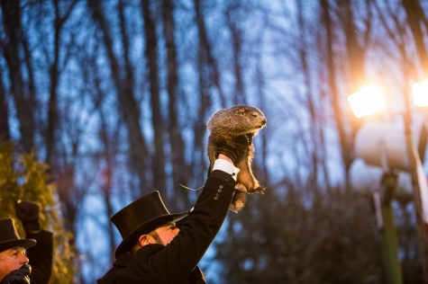 A new kind of Groundhog Day